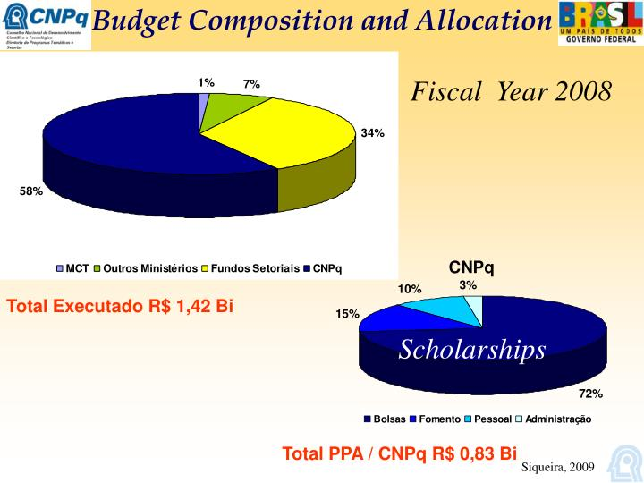 Budget Composition and Allocation