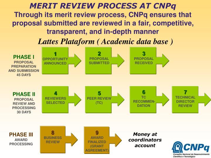 MERIT REVIEW PROCESS AT CNPq