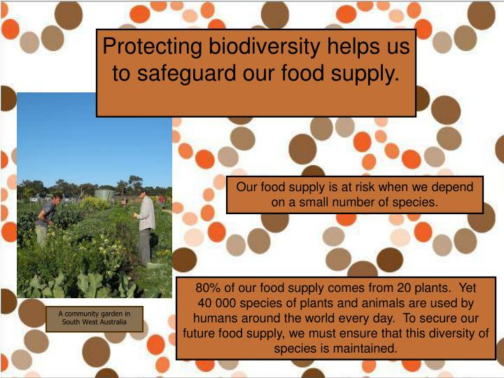 Protecting biodiversity helps us to safeguard our food supply.