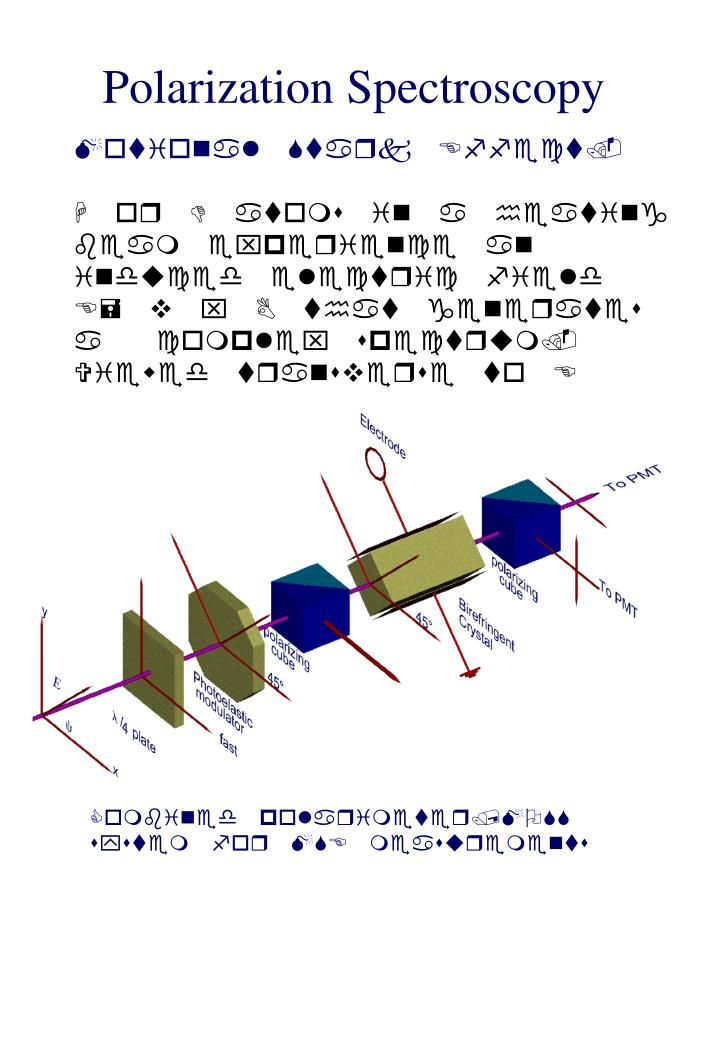 Polarization Spectroscopy