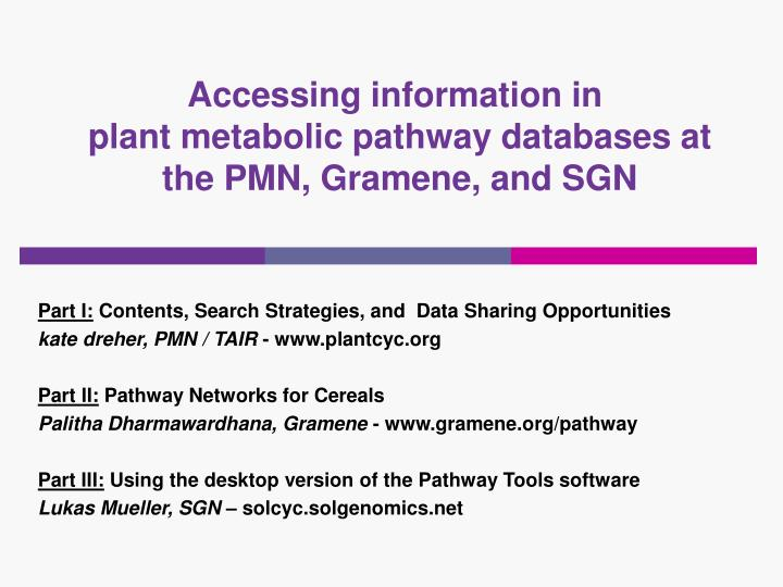 Accessing information in plant metabolic pathway databases at the pmn gramene and sgn