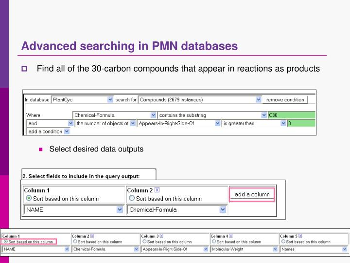 Advanced searching in PMN databases