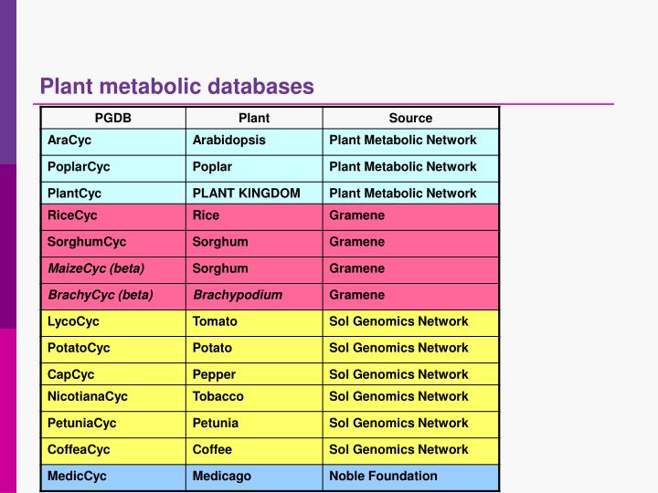 Plant metabolic databases
