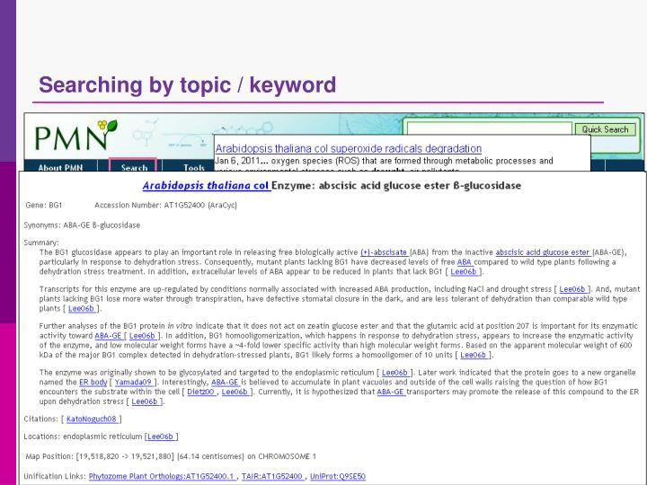 Searching by topic / keyword