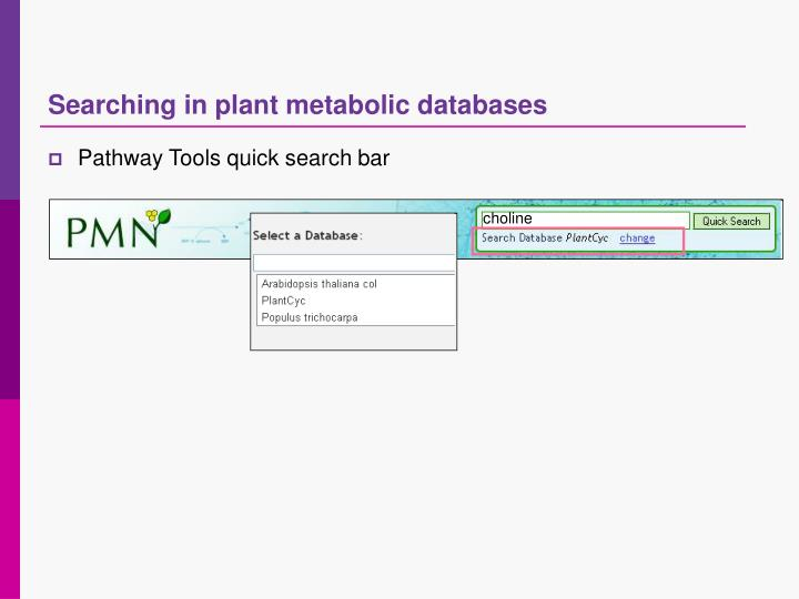 Searching in plant metabolic databases