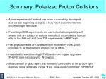 summary polarized proton collisions