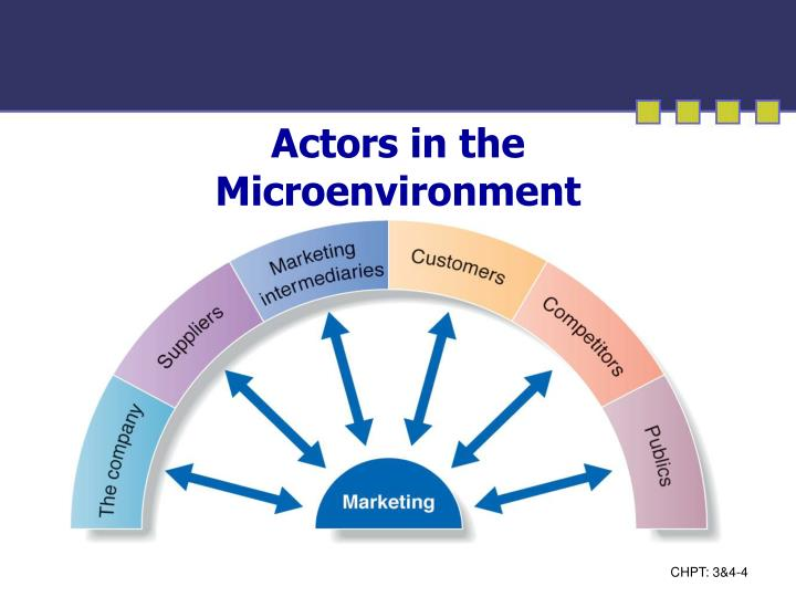 actors in the microenvironment