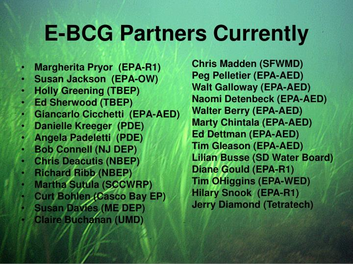 E-BCG Partners Currently