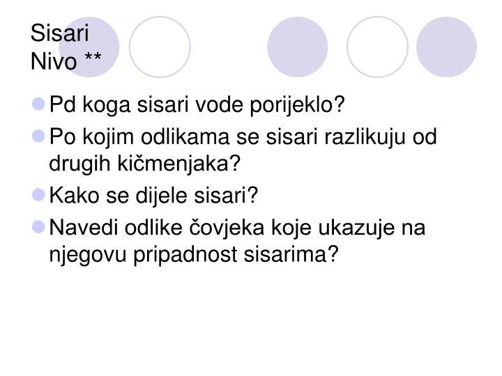 Sisari