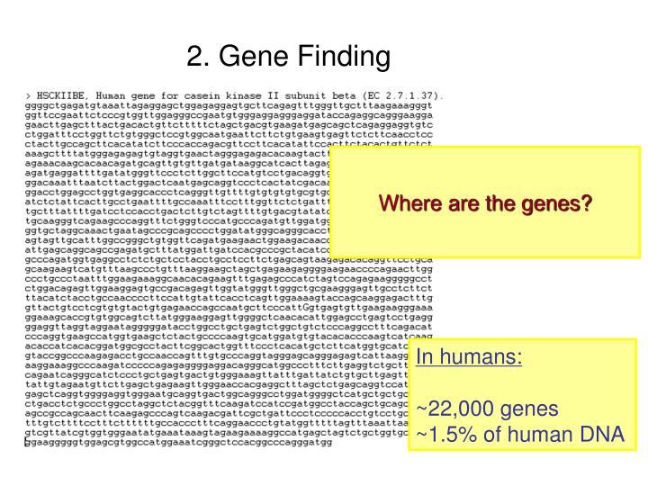 2. Gene Finding