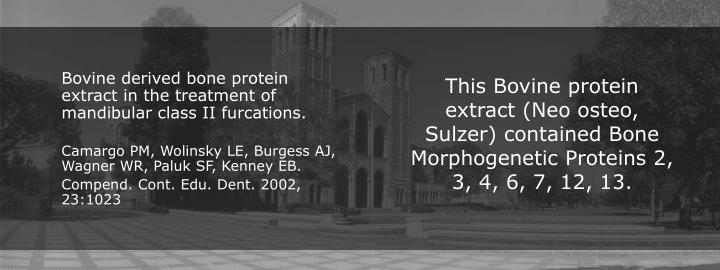 This Bovine protein extract (Neo osteo, Sulzer) contained Bone Morphogenetic Proteins 2, 3, 4, 6, 7, 12, 13.