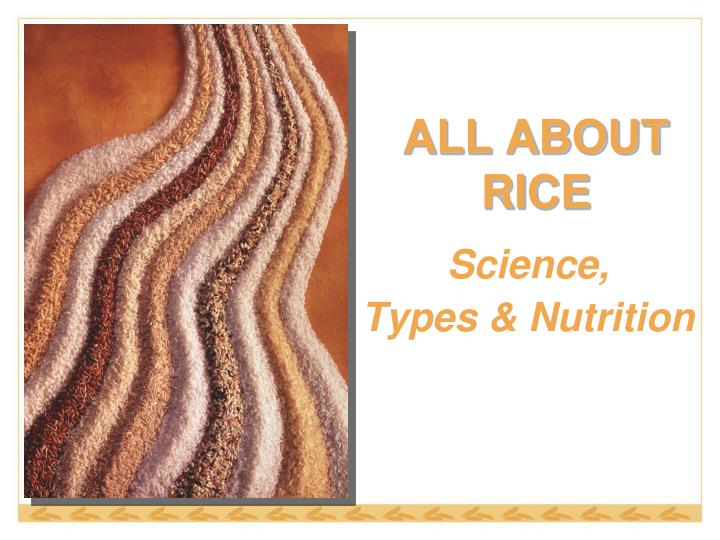 all about rice n.