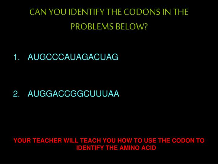CAN YOU IDENTIFY THE CODONS IN THE PROBLEMS BELOW?