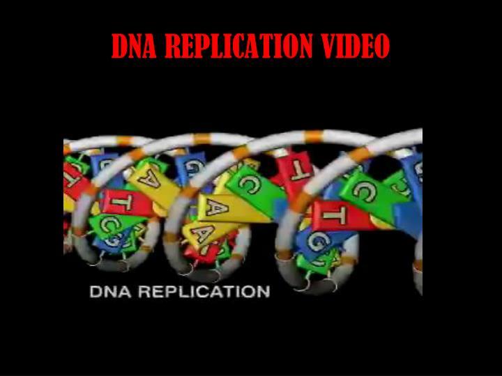 DNA REPLICATION VIDEO