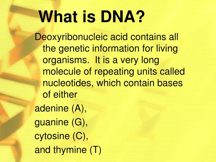 Ppt dna the blueprint of life powerpoint presentation id what is dna malvernweather Images