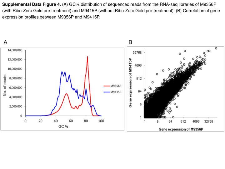 Supplemental Data Figure 4.