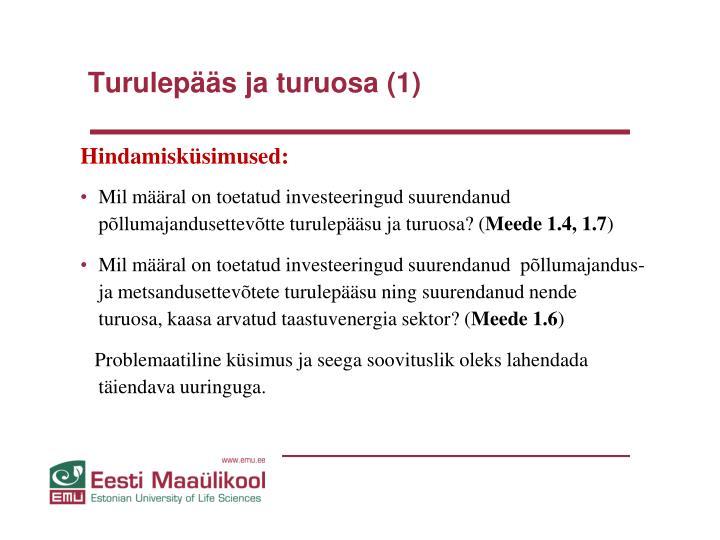 Turulepääs ja turuosa (1)