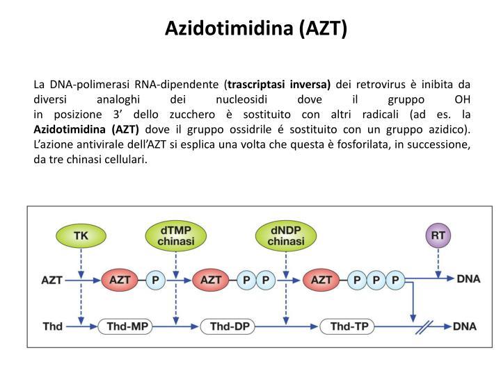 Azidotimidina (AZT)