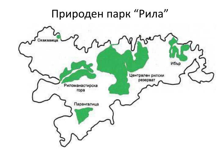 "Природен парк ""Рила"""