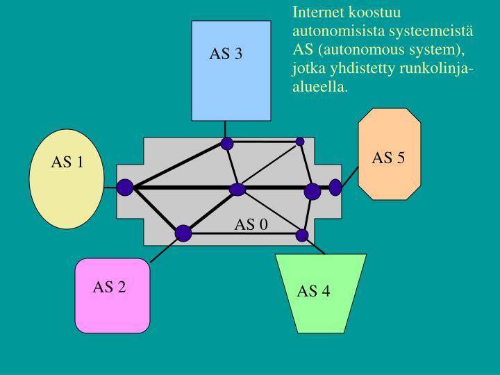 Internet koostuu autonomisista systeemeistä AS (autonomous system), jotka yhdistetty runkolinja-alueella.