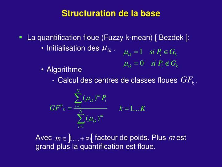 Structuration de la base