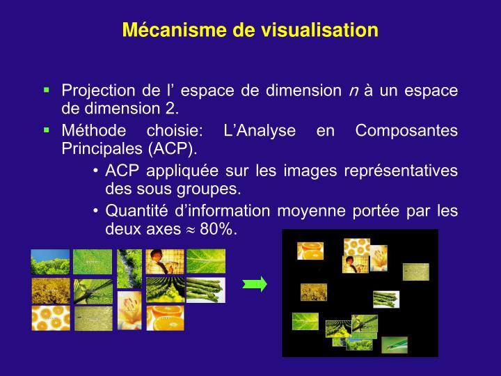 Mécanisme de visualisation