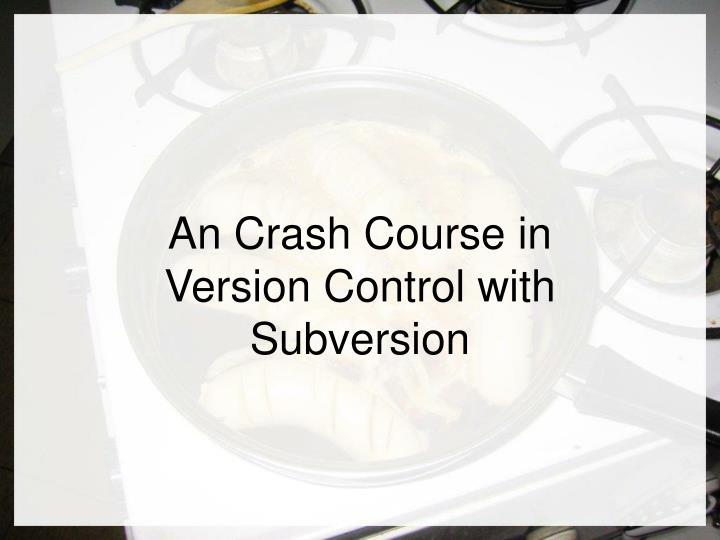 an crash course in version control with subversion n.