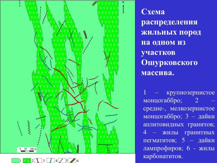 Схема распределения жильных пород на одном из участков Ошурковского массива.