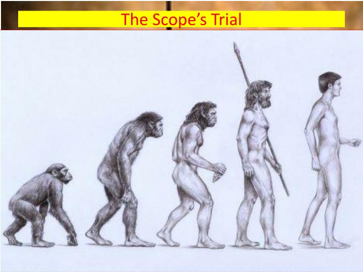 The Scope's Trial