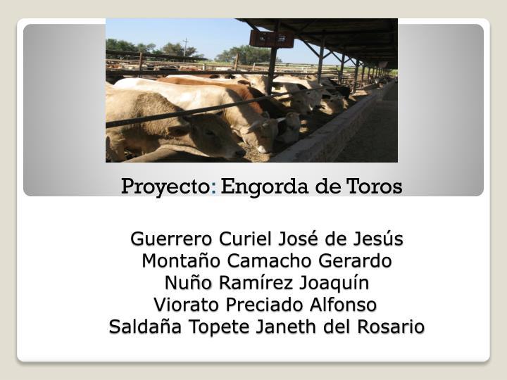 Guerrero Curiel José de Jesús