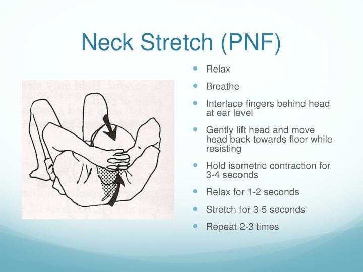 Neck Stretch (PNF)