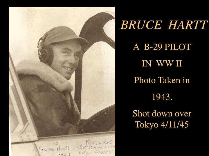 BRUCE  HARTT