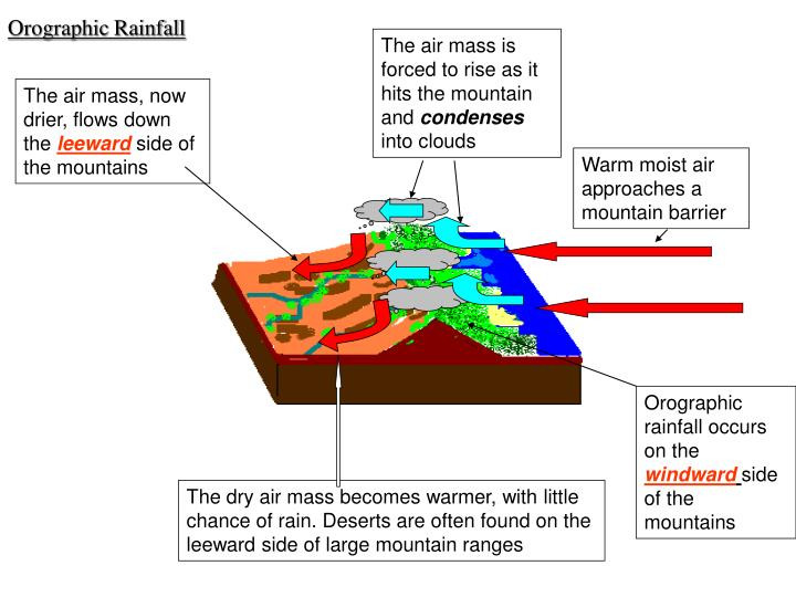 The air mass is forced to rise as it hits the mountain and