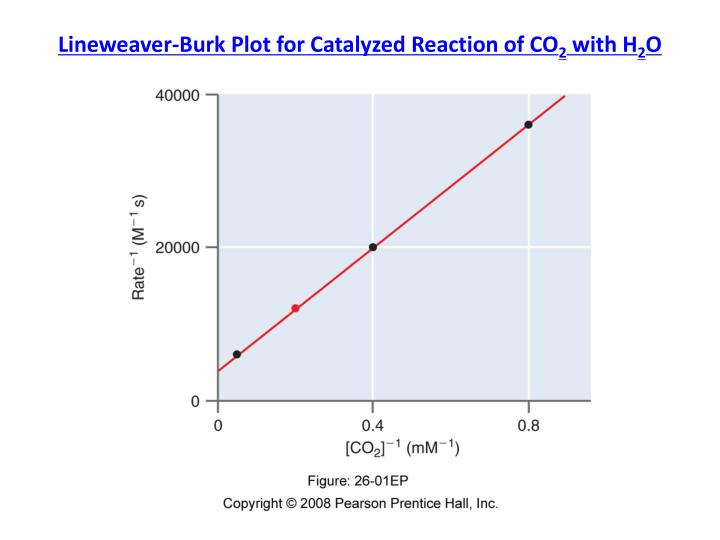 Lineweaver-Burk Plot for Catalyzed Reaction of CO