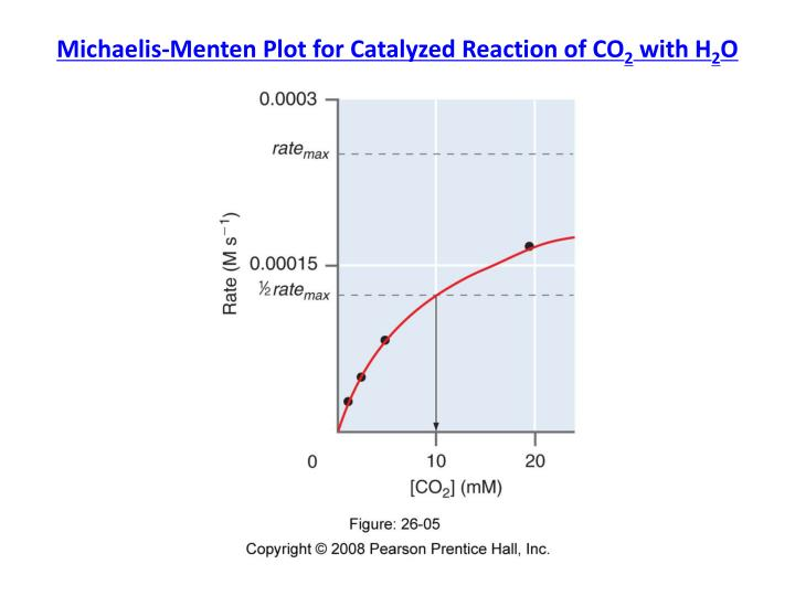 Michaelis menten plot for catalyzed reaction of co 2 with h 2 o