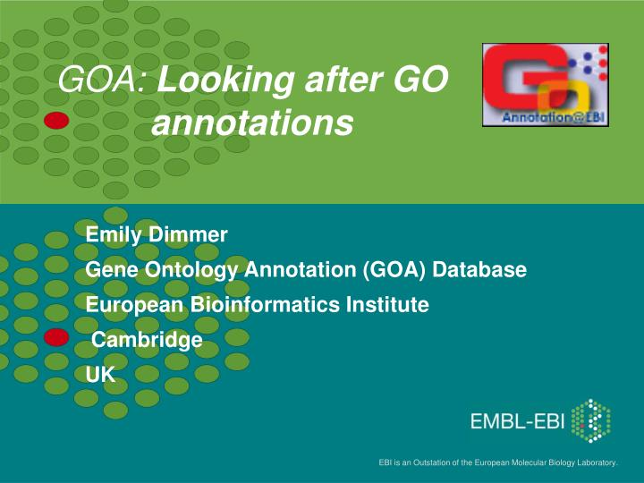 goa looking after go annotations n.