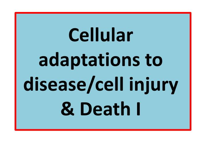 cellular adaptations to disease cell injury death i n.