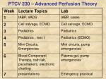 ptcv 230 advanced perfusion theory