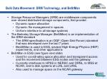 bulk data movement srm technology and bestman