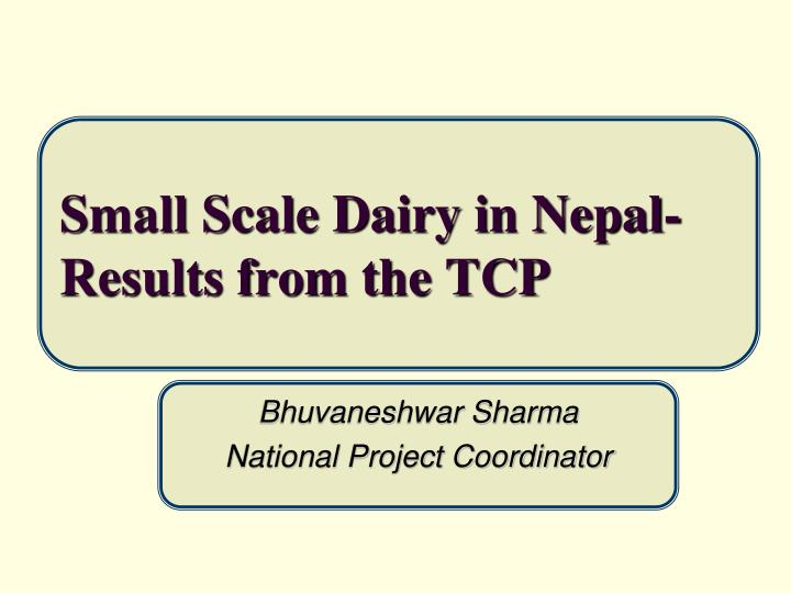 small scale dairy in nepal results from the tcp n.