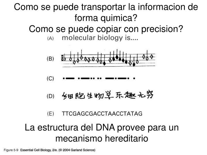 Como se puede transportar la informacion de forma quimica?