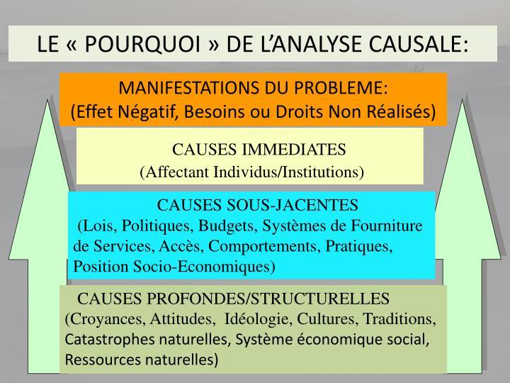 LE «POURQUOI» DE L'ANALYSE CAUSALE: