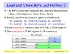 load and store byte and halfword