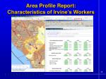 area profile report characteristics of irvine s workers