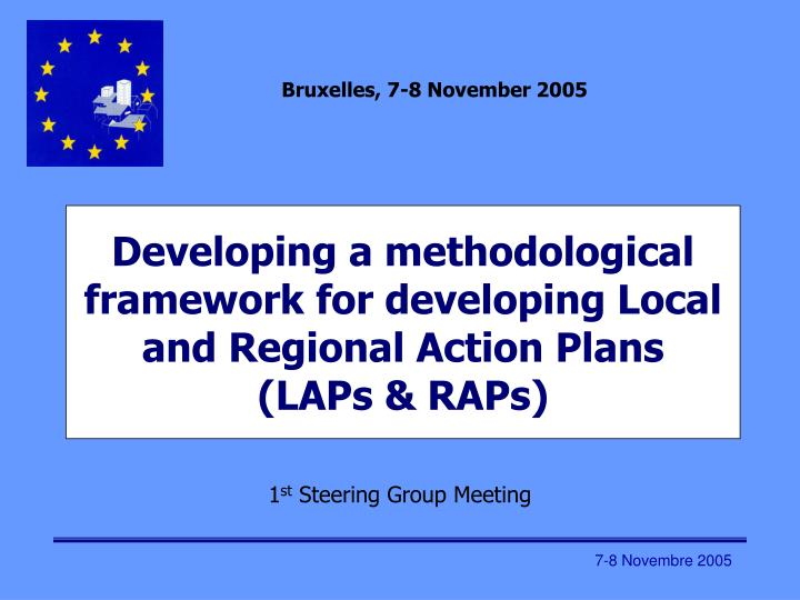 developing a methodological framework for developing local and regional action plans laps raps n.