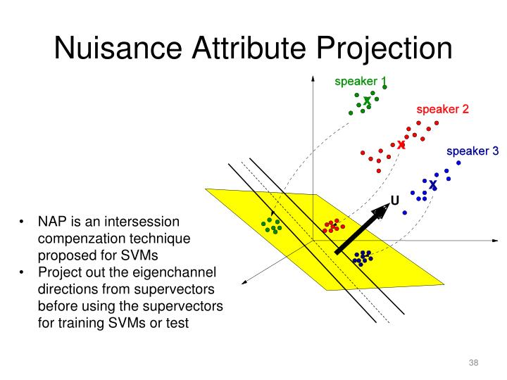 Nuisance Attribute Projection