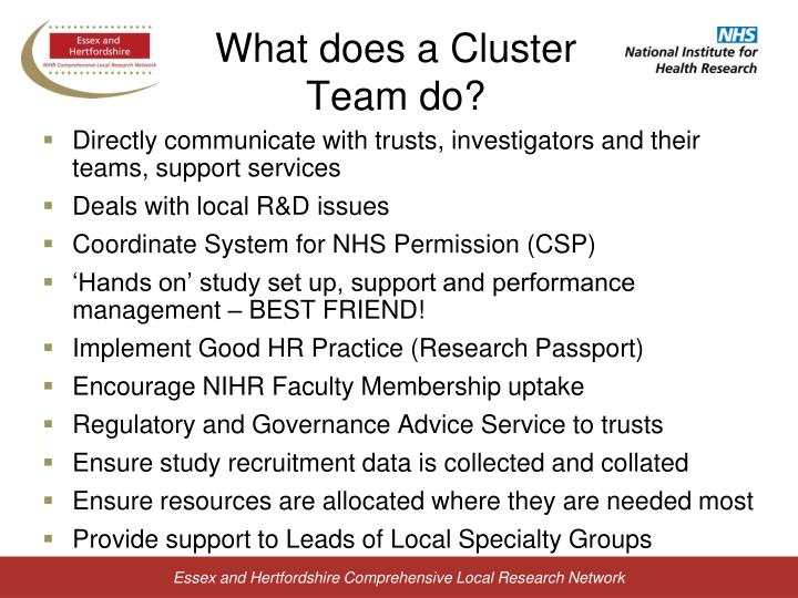 What does a Cluster Team do?