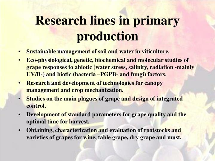 Research lines in primary production