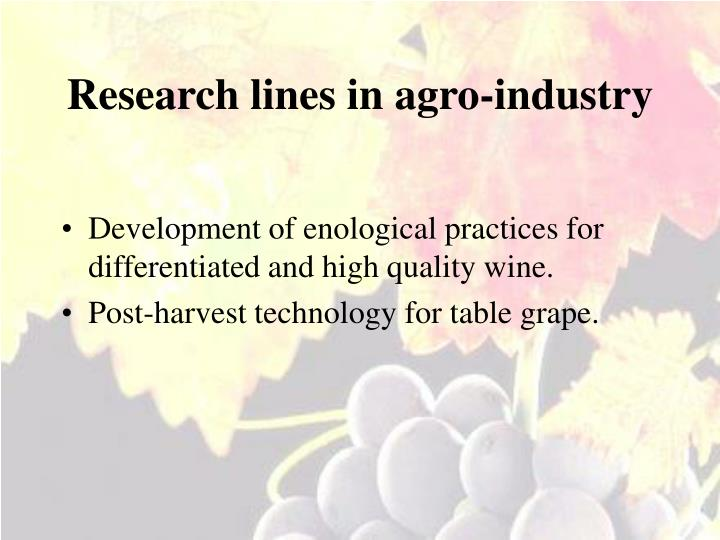 Research lines in