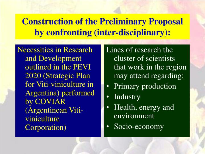 Construction of the Preliminary Proposal
